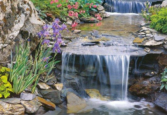 Вода - источник жизни на планете Земля