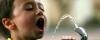 Статья - Вода - источник жизни на Земле